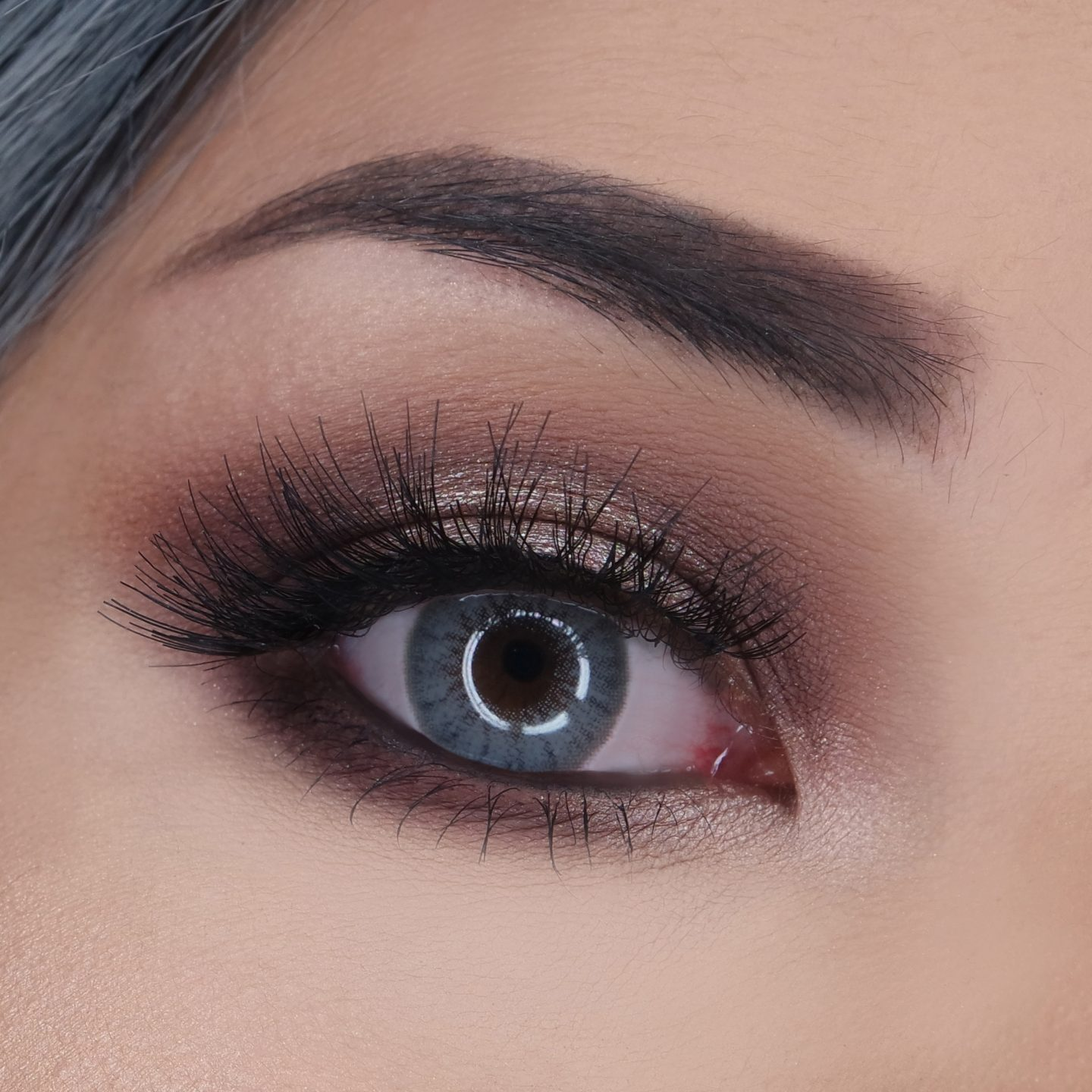 Desio Two Shades of Grey Color Contact Lenses